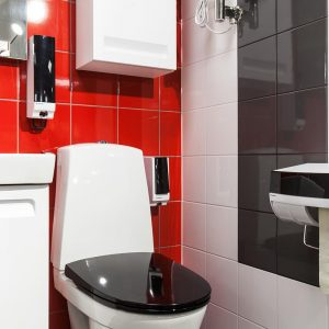 Hygiene Products Paper Dispensers and Toiletpaper